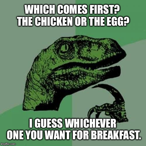 Philosoraptor Meme | WHICH COMES FIRST? THE CHICKEN OR THE EGG? I GUESS WHICHEVER ONE YOU WANT FOR BREAKFAST. | image tagged in memes,philosoraptor | made w/ Imgflip meme maker