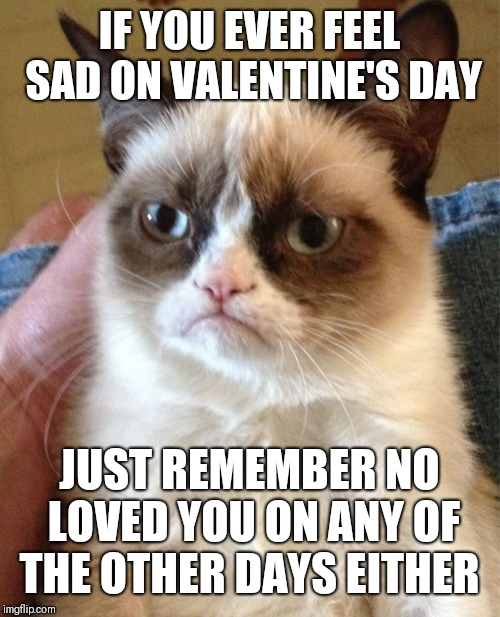 Grumpy Cat Meme | IF YOU EVER FEEL SAD ON VALENTINE'S DAY JUST REMEMBER NO LOVED YOU ON ANY OF THE OTHER DAYS EITHER | image tagged in memes,grumpy cat | made w/ Imgflip meme maker