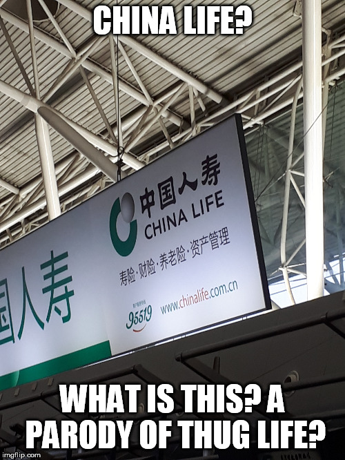 china life | CHINA LIFE? WHAT IS THIS? A PARODY OF THUG LIFE? | image tagged in thug life,thuglife,parody,meme parody | made w/ Imgflip meme maker