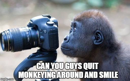 Serious Monkey | CAN YOU GUYS QUIT MONKEYING AROUND AND SMILE | image tagged in monkey business,camera,memes | made w/ Imgflip meme maker