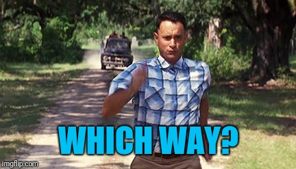 Run Forrest Run | WHICH WAY? | image tagged in run forrest run | made w/ Imgflip meme maker
