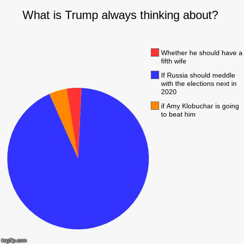 What is Trump always thinking about? | if Amy Klobuchar is going to beat him, If Russia should meddle with the elections next in 2020, Wheth | image tagged in funny,pie charts | made w/ Imgflip chart maker