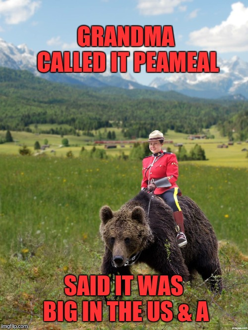 Canada | GRANDMA CALLED IT PEAMEAL SAID IT WAS BIG IN THE US & A | image tagged in canada | made w/ Imgflip meme maker