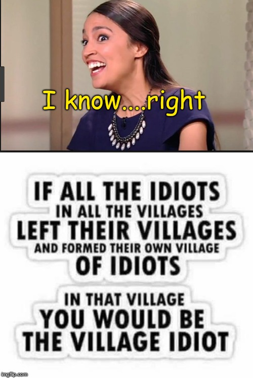 I know....right | image tagged in alexandria ocasio-cortez,idiot | made w/ Imgflip meme maker