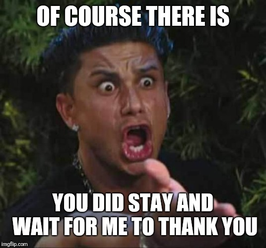 Jersey shore  | OF COURSE THERE IS YOU DID STAY AND WAIT FOR ME TO THANK YOU | image tagged in jersey shore | made w/ Imgflip meme maker