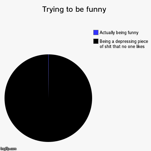 Trying to be funny | Being a depressing piece of shit that no one likes, Actually being funny | image tagged in funny,pie charts | made w/ Imgflip chart maker