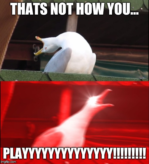 Screaming bird | THATS NOT HOW YOU... PLAYYYYYYYYYYYYYY!!!!!!!!! | image tagged in screaming bird | made w/ Imgflip meme maker