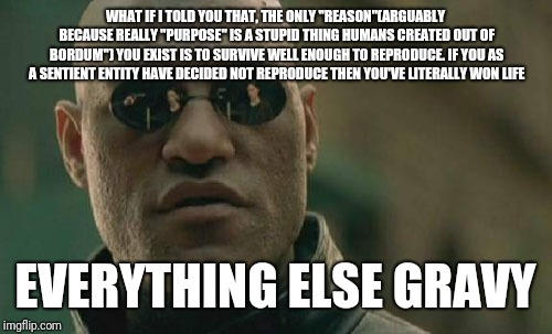 "Matrix Morpheus Meme | WHAT IF I TOLD YOU THAT, THE ONLY ""REASON""(ARGUABLY BECAUSE REALLY ""PURPOSE"" IS A STUPID THING HUMANS CREATED OUT OF BORDUM"") YOU EXIST IS T 