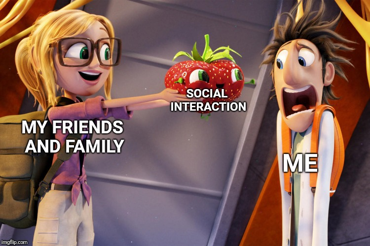 Every Single Day |  SOCIAL INTERACTION; MY FRIENDS AND FAMILY; ME | image tagged in socially awkward | made w/ Imgflip meme maker
