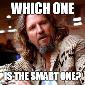 Confused Lebowski Meme | WHICH ONE IS THE SMART ONE? | image tagged in memes,confused lebowski | made w/ Imgflip meme maker