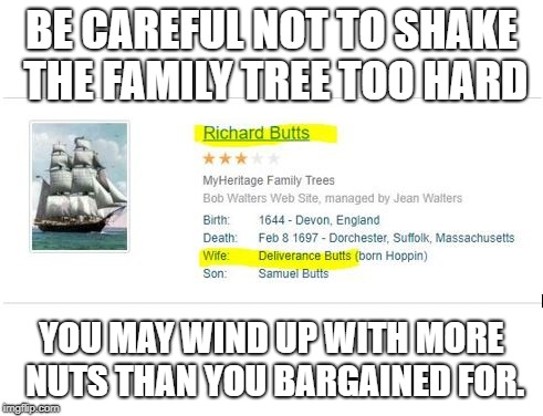 Family Tree Gone Wrong | BE CAREFUL NOT TO SHAKE THE FAMILY TREE TOO HARD YOU MAY WIND UP WITH MORE NUTS THAN YOU BARGAINED FOR. | image tagged in genealogy,family tree,funny meme | made w/ Imgflip meme maker