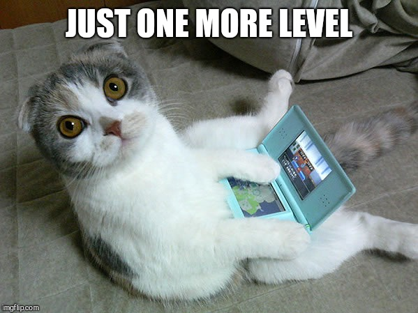 Cats W/ Computers | JUST ONE MORE LEVEL | image tagged in cats w/ computers | made w/ Imgflip meme maker