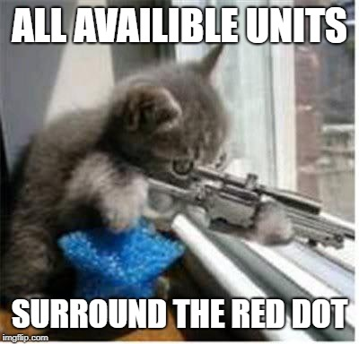 Red Dot Assault |  ALL AVAILIBLE UNITS; SURROUND THE RED DOT | image tagged in cats with guns,funny cat memes,cat memes,cat meme,funny cats,funny cat | made w/ Imgflip meme maker