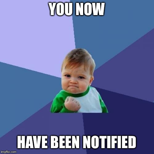 Success Kid Meme | YOU NOW HAVE BEEN NOTIFIED | image tagged in memes,success kid | made w/ Imgflip meme maker