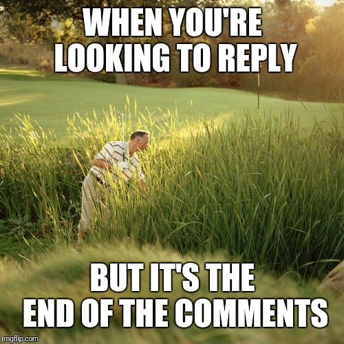 End of the Thread Week | March 7-13 | A BeyondTheComments Event | WHEN YOU'RE LOOKING TO REPLY BUT IT'S THE END OF THE COMMENTS | image tagged in golfball search,endofthread,beyondthecomments,palringo,btc | made w/ Imgflip meme maker