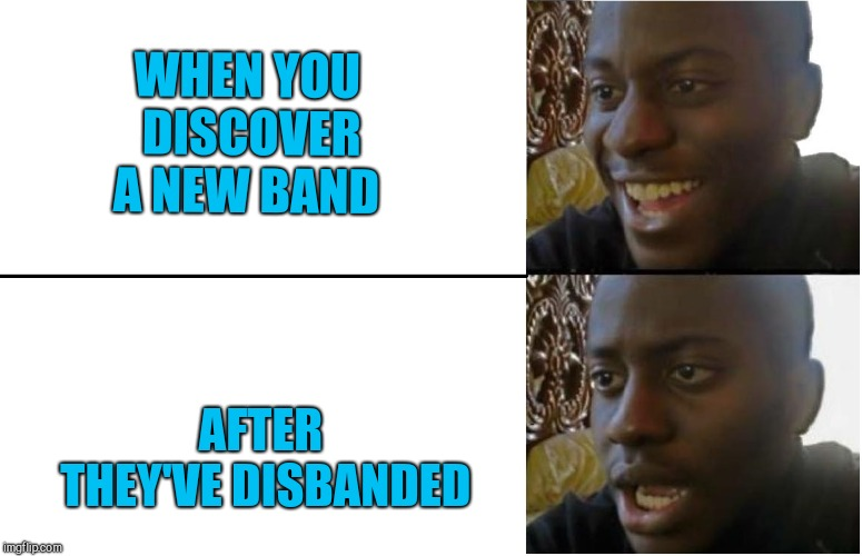 WHEN YOU DISCOVER A NEW BAND; AFTER THEY'VE DISBANDED | image tagged in dissapointed black guy | made w/ Imgflip meme maker