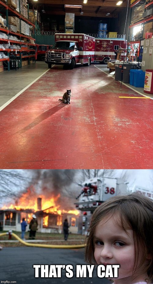 THAT'S MY CAT | image tagged in memes,disaster girl,firestation cat | made w/ Imgflip meme maker
