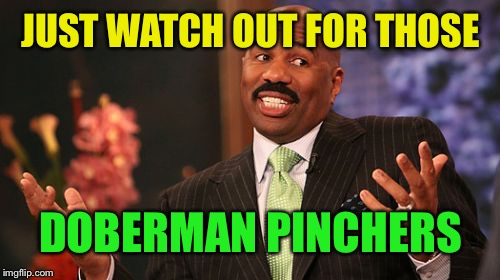 Steve Harvey Meme | JUST WATCH OUT FOR THOSE DOBERMAN PINCHERS | image tagged in memes,steve harvey | made w/ Imgflip meme maker