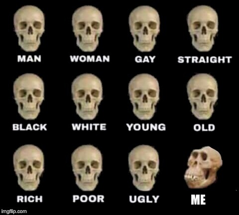 idiot skull | ME | image tagged in idiot skull | made w/ Imgflip meme maker
