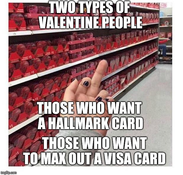 Valentine's Day | TWO TYPES OF VALENTINE PEOPLE THOSE WHO WANT A HALLMARK CARD THOSE WHO WANT TO MAX OUT A VISA CARD | image tagged in valentine's day | made w/ Imgflip meme maker