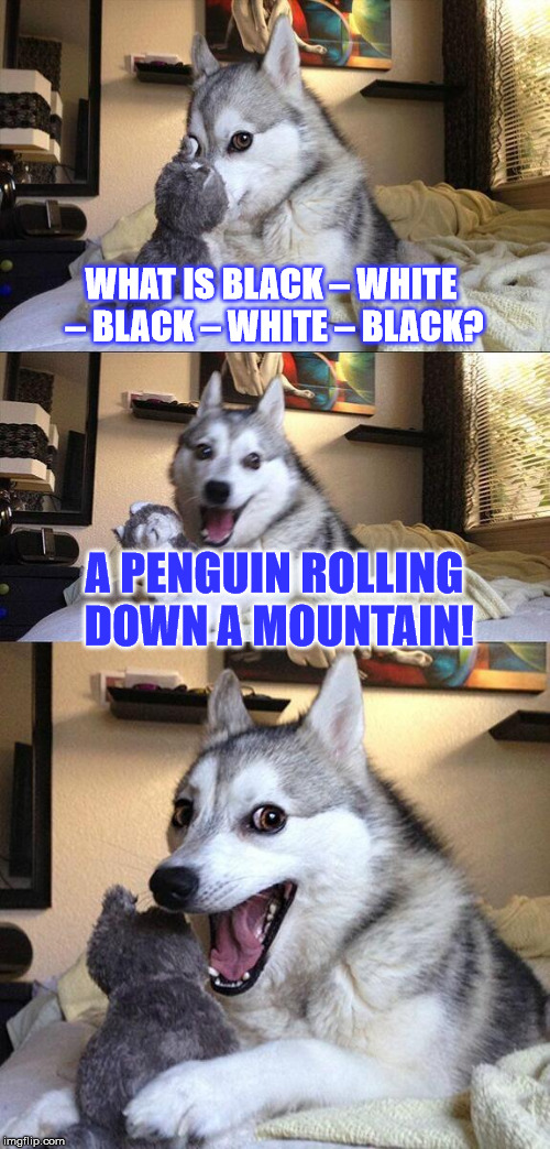 This is PUN-tastic! (Oh boy...) | WHAT IS BLACK – WHITE – BLACK – WHITE – BLACK? A PENGUIN ROLLING DOWN A MOUNTAIN! | image tagged in memes,bad pun dog,penguin,jokes,bad jokes | made w/ Imgflip meme maker