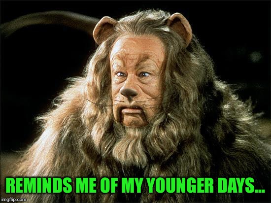 cowardly lion | REMINDS ME OF MY YOUNGER DAYS... | image tagged in cowardly lion | made w/ Imgflip meme maker