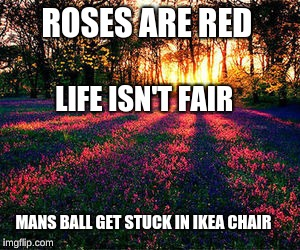 roses are red | ROSES ARE RED LIFE ISN'T FAIR MANS BALL GET STUCK IN IKEA CHAIR | image tagged in roses are red | made w/ Imgflip meme maker