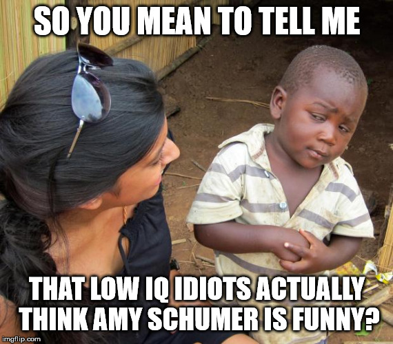 So you mean to tell me | SO YOU MEAN TO TELL ME THAT LOW IQ IDIOTS ACTUALLY THINK AMY SCHUMER IS FUNNY? | image tagged in so you mean to tell me | made w/ Imgflip meme maker
