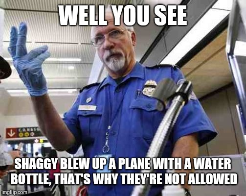 Tsa, water, and shaggy | WELL YOU SEE SHAGGY BLEW UP A PLANE WITH A WATER BOTTLE, THAT'S WHY THEY'RE NOT ALLOWED | image tagged in tsa glove,shaggy,shaggy meme,tsa,water bottle | made w/ Imgflip meme maker