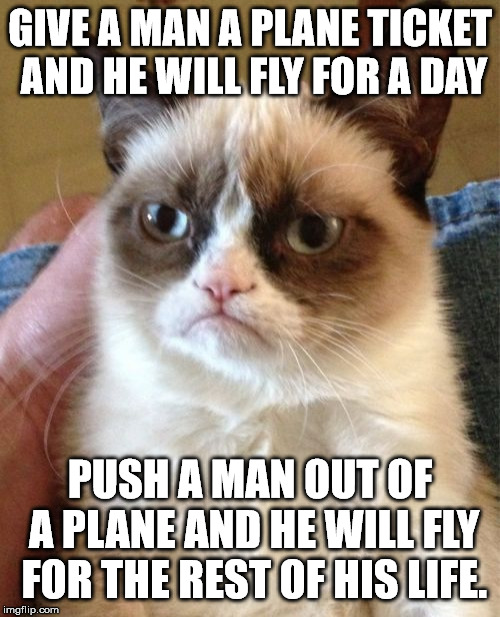 Grumpy Cat | GIVE A MAN A PLANE TICKET AND HE WILL FLY FOR A DAY PUSH A MAN OUT OF A PLANE AND HE WILL FLY FOR THE REST OF HIS LIFE. | image tagged in memes,grumpy cat | made w/ Imgflip meme maker