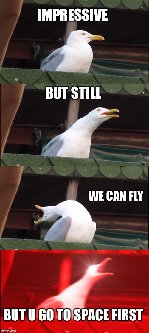 IMPRESSIVE BUT STILL WE CAN FLY BUT U GO TO SPACE FIRST | image tagged in memes,inhaling seagull | made w/ Imgflip meme maker