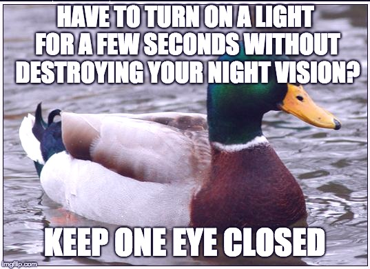 Actual Advice Mallard Meme | HAVE TO TURN ON A LIGHT FOR A FEW SECONDS WITHOUT DESTROYING YOUR NIGHT VISION? KEEP ONE EYE CLOSED | image tagged in memes,actual advice mallard | made w/ Imgflip meme maker