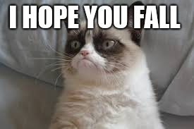 Grumpy cat | I HOPE YOU FALL | image tagged in grumpy cat | made w/ Imgflip meme maker