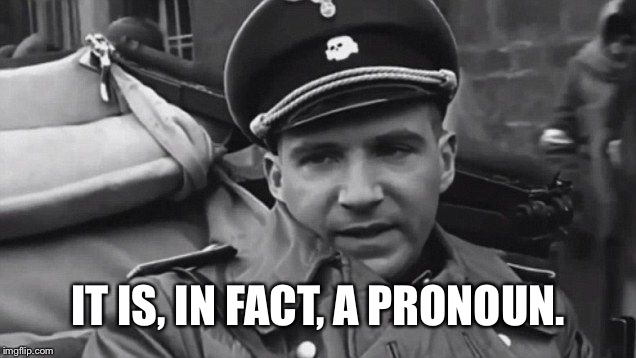 Grammar Nazi | IT IS, IN FACT, A PRONOUN. | image tagged in grammar nazi | made w/ Imgflip meme maker