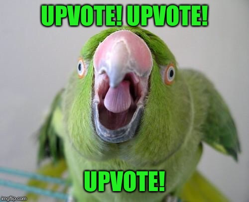 Parrot | UPVOTE! UPVOTE! UPVOTE! | image tagged in parrot | made w/ Imgflip meme maker