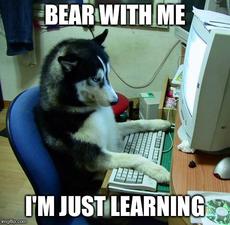 I Have No Idea What I Am Doing | BEAR WITH ME I'M JUST LEARNING | image tagged in memes,i have no idea what i am doing | made w/ Imgflip meme maker