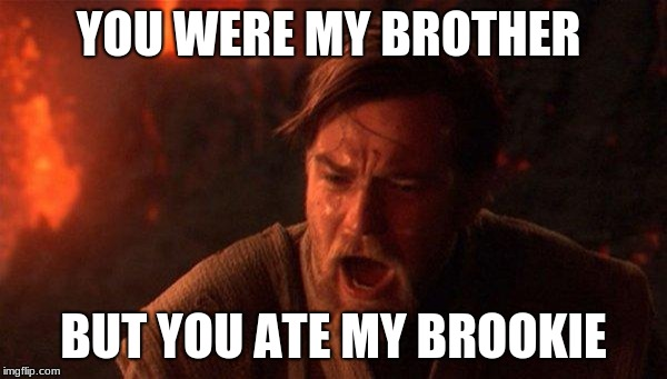 You Were The Chosen One (Star Wars) | YOU WERE MY BROTHER BUT YOU ATE MY BROOKIE | image tagged in memes,you were the chosen one star wars | made w/ Imgflip meme maker