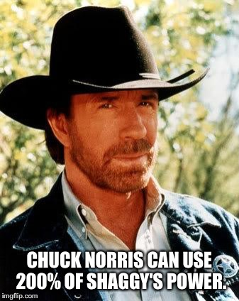 Chuck Norris | CHUCK NORRIS CAN USE 200% OF SHAGGY'S POWER. | image tagged in memes,chuck norris,shaggy | made w/ Imgflip meme maker