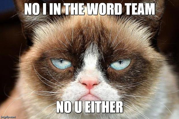 Grumpy Cat Not Amused Meme | NO I IN THE WORD TEAM NO U EITHER | image tagged in memes,grumpy cat not amused,grumpy cat | made w/ Imgflip meme maker