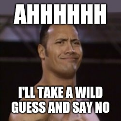 The Rock not impressed | AHHHHHH I'LL TAKE A WILD GUESS AND SAY NO | image tagged in the rock not impressed | made w/ Imgflip meme maker
