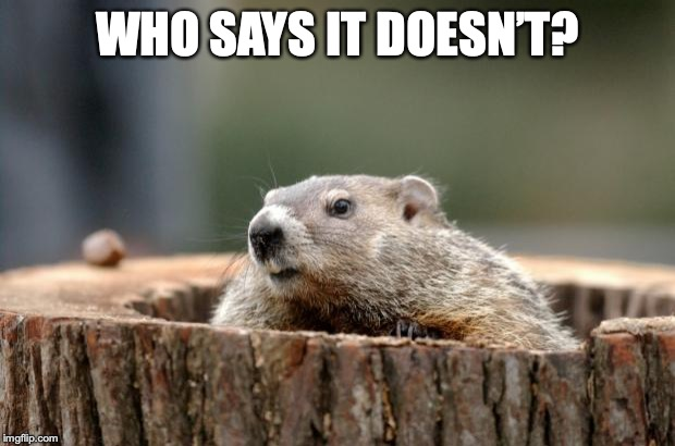 Groundhog | WHO SAYS IT DOESN'T? | image tagged in groundhog | made w/ Imgflip meme maker