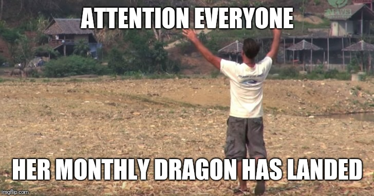 PMS Dragon Landing Announcement  | ATTENTION EVERYONE HER MONTHLY DRAGON HAS LANDED | image tagged in pms,women,message,psa,girlfriend,issues | made w/ Imgflip meme maker