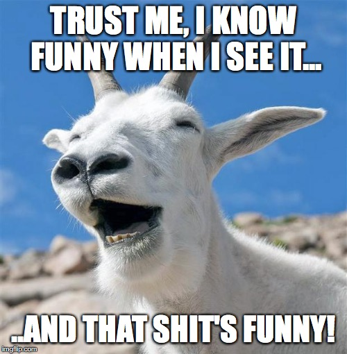 Laughing Goat | TRUST ME, I KNOW FUNNY WHEN I SEE IT... ..AND THAT SHIT'S FUNNY! | image tagged in memes,laughing goat | made w/ Imgflip meme maker