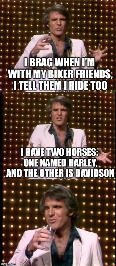 steve martin bad joke | I BRAG WHEN I'M WITH MY BIKER FRIENDS, I TELL THEM I RIDE TOO I HAVE TWO HORSES: ONE NAMED HARLEY, AND THE OTHER IS DAVIDSON | image tagged in steve martin bad joke | made w/ Imgflip meme maker