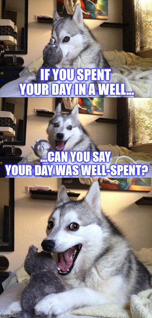 Give me PUN-mission to proceed (I know, I know, the title is worse than the joke...) |  IF YOU SPENT YOUR DAY IN A WELL... ...CAN YOU SAY YOUR DAY WAS WELL-SPENT? | image tagged in memes,bad pun dog,joke,jokes,well | made w/ Imgflip meme maker