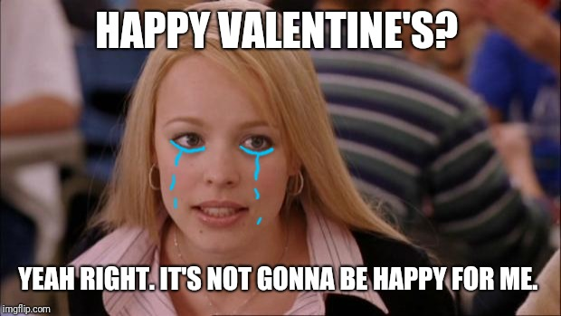 Welp.....  | HAPPY VALENTINE'S? YEAH RIGHT. IT'S NOT GONNA BE HAPPY FOR ME. | image tagged in memes,its not going to happen,valentine's day | made w/ Imgflip meme maker