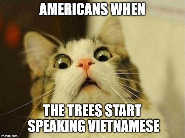 Scared Cat | AMERICANS WHEN THE TREES START SPEAKING VIETNAMESE | image tagged in memes,scared cat | made w/ Imgflip meme maker