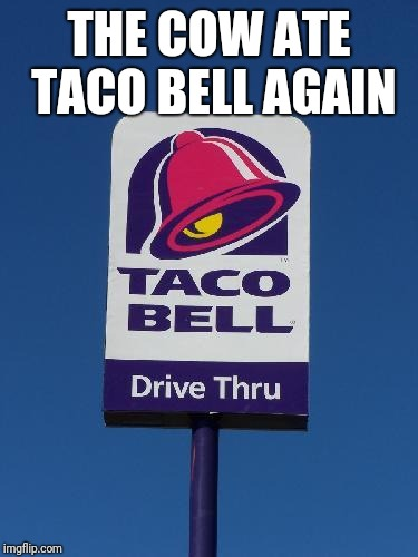 Taco Bell Sign | THE COW ATE TACO BELL AGAIN | image tagged in taco bell sign | made w/ Imgflip meme maker