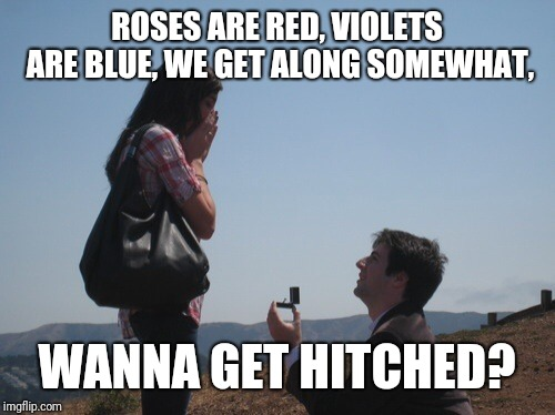 Marriage proposal | ROSES ARE RED, VIOLETS ARE BLUE, WE GET ALONG SOMEWHAT, WANNA GET HITCHED? | image tagged in marriage proposal | made w/ Imgflip meme maker