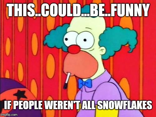 Krusty The Clown What The Hell Was That? | THIS..COULD...BE..FUNNY IF PEOPLE WEREN'T ALL SNOWFLAKES | image tagged in krusty the clown what the hell was that | made w/ Imgflip meme maker